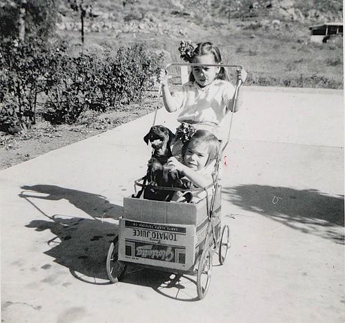 Blackie in a box - Riverside, summer 1954