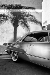 California Ford (autobahn66.com) Tags: city urban blackandwhite ford monochrome vintage fifties streetphotography chrome palmtree americana 50s