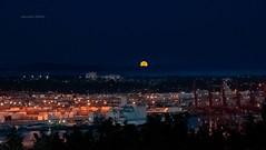 Moon Rising Over West Seattle (jeanmarie shelton) Tags: seattle landscape city night moon jeanmarieshelton