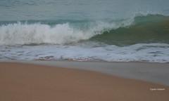 09-070505 Spanien 3 164-001 (hemingwayfoto) Tags: andalusien atlantik brandung conildelafrontera europa meer morgens radtour reise sand spanien strand wellen
