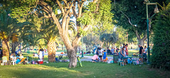 2016.07.09 Tel Aviv People and Places 06835 (tedeytan) Tags: bbq ramatgan barbecue israel telaviv exif:isospeed=640 exif:aperture=56 camera:make=sony exif:lens=e18200mmf3563 exif:focallength=498mm exif:make=sony camera:model=ilce6300 exif:model=ilce6300