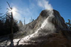YellowStone-9978.jpg (ngkaiwa) Tags: yellowstone yellowstonepark
