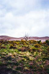 . (robynahynes) Tags: desert outside nature landscape livefolk moab utah new mexico colorado women girl flickr nikon d3100 mystical colorful whimsy ethereal trippy