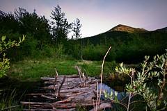 Kananaskis (Jamie Kerr) Tags: camping trees mountains nature water grass kananaskis outdoors sticks pond peaceful calm refreshing bearcountry