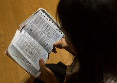 North korean teen defector reading the bible, National capital area, Seoul, South korea (Eric Lafforgue) Tags: people woman color horizontal closeup asian religious outdoors photography reading book concentration asia day reader refugee faith religion indoors human seoul teenager bible daytime spirituality ethiopia southkorea youngadult humanbeing oneperson tome holybible concentrating holybook spiritualism defector 1819years northkorean 1617years 1people nationalcapitalarea colourpicture koreanscript koreanethnicity sk162393