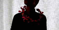 wreath (Ines Seidel) Tags: paper necklace wire jewelry jewellery wreath papier kranz schmuck kette draht papierschmuck