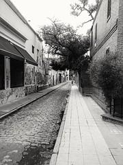 Pasaje en Palermo, Buenos Aires (gustavobarral) Tags: calle palermo callejon empedrado