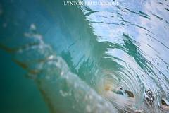 IMG_4569 copy (Aaron Lynton) Tags: canon hawaii waves barrels barrel wave maui 7d spl makena shorebreak barreling lyntonproductions