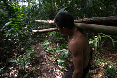 Guilherme.Gnipper-0271 (guilherme gnipper) Tags: picodaneblina yaripo yanomami expedio expedition cume montanha mountain wild rainforest amazonas amazonia amazon brazil indigenous indigena people