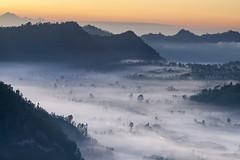 Misty Morning - Bali Photography Tour (Pandu Adnyana Photography Tour) Tags: baliphotographytour baliphotographyguide balitravelphotography balilandscapephotography balilandscapetour balilandscape bali indonesia batur mount lake sunrise fog dawn valley pinggan