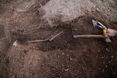 Exhumación en El Pando (León) (9)
