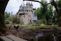 En el reino (Alonso Henrquez) Tags: birds aves water nature architecture building castle medieval naturaleza campo arquitectura castillo construccin estero agua chile fujifilmx100 x100 velvia colchagua placilla alonsohenrquez regindeohiggins