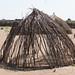 Nyangatom hut in progress
