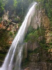 Xilitla, San Luis Potos. (Gerardo Stfano) Tags: nature mxico sanluispotosi waterfall cascada xilitla