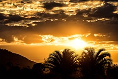 The Sky Is On Fire, Setting Sun At Kybong (Geoffsnaps) Tags: ibis rookery kybong matildas matildaskybong nikond810 nikon d810 fx nikonnikkor200500mmf56eedvrafs nikkor 200500mm f56e ed vr afs gitzogm5541carbonmonopod gitzo gm5541 carbon monopod acratechpanoramichead monopodhead acratech panoramic head