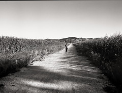 Landscape with Woman Standing (Erinmore Flake) Tags: mamiya645 mamiyasekor12845mm portugal