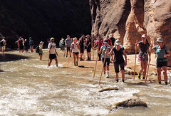 2016-09-p02-narrows-mjl-028 (Mike Legeros) Tags: ut utah zion zionnationalpark narrows river slotcanyon swiftwater wetfeet watchyourstep
