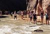 2016-09-p02-narrows-mjl-028 (Mike Legeros) Tags: ut utah zion zionnationalpark narrows river slotcanyon swiftwater wetfeet watchyourstep