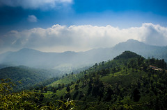 Beauty of nature (Anand Raghavan) Tags: cloud sky blue green layers layer beauty ooty tamilnadu india hills trees ragavanands ngc landscape