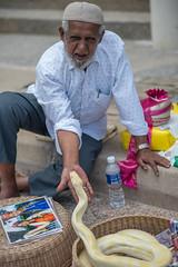 snake charmer (mohamedyamin_masop) Tags: nikondf street people portrait snake snakecharmer