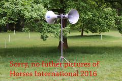 2016 Horses International (Steenvoorde Leen - 2.3 ml views) Tags: 2016 maarsbergen landgoed eventing horses international dressuur jumping dressage hindernis hrde obstacle hurde fenche springen pferde pferd horse cheval cheveaux maarsbergen2016