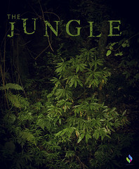 The Jungle (vibrancefotografy) Tags: baby beach berlin birthday blue bw california canada canon car cat chicago city concert dog europe family festival flower food france friends fun garden graffiti green holiday india landscaarchitecturepe light macro art me museum music nature new newyork night nikon paris park party people portrait red sea show sky snow spain spring stlouis street summer sunset texas travel tree trees trip uk usa vacation vibrance photography washington water wedding winter zoo