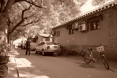 "China Beijing hutong backalleys with parked bikes and some shade - ""China Gray"" (moreska) Tags: china beijing hutong backalley oldschool retro bicycle auto vehicle streetview streetscene outdoor shade blackandwhite monochrome sepia gritty gray branches alleyways capital middle kingdom asia"