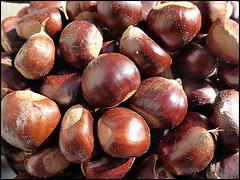 Castagne (ninin 50) Tags: castagne autunno fruttodistagione nature ninin