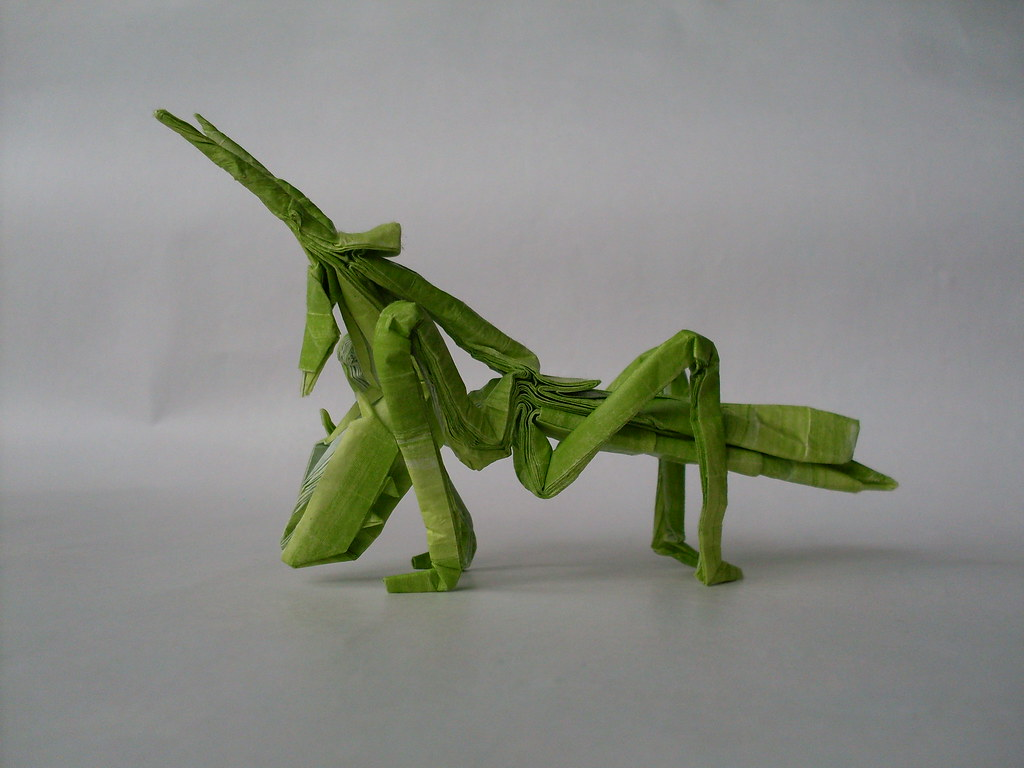 the worlds best photos of mantis and origami flickr