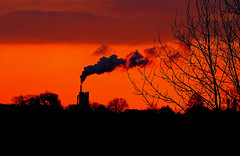 Cement Factory Autumn Sunset