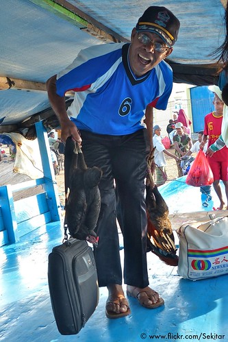 Entering the boat with chicken and laptop, Pelabuhan, Baranusa, Pantar NTT