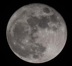 Moon (World-viewer) Tags: sky blackandwhite bw moon white black night blackwhite astro crescent full craters half cosmos