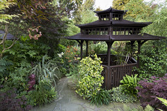 Pagoda view in summer (Four Seasons Garden) Tags: uk red summer england dog west english stone garden four golden pagoda wooden king seasons july holly foo oriental midland walsall asiatic ilex ngs fourseasonsgarden
