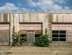 Empty (AP Imagery) Tags: brick abandoned overgrown doors decay kentucky ky garage owensboro urbanexploring urbex