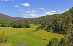 Lot 20, 58 Priests Ridge Road, Yarramalong NSW
