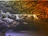 A WEIR IN THE RIVER (Rose Frankcombe) Tags: australia tasmania launceston weir southeskriver firstbasin cataractgorgereserve rosefrankcombe