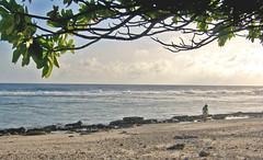 evening Hotel KIAORA Tahiti Rangiroa (sapphire_rouge) Tags: france resort lagoon tahiti atoll rangiroa polynesia snorkeling  franchpolynesia    atool polynsiefranaise