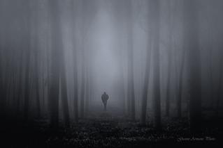 L'uomo nella nebbia