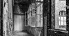 Windows  of beelitz (Dirk 0701) Tags: windows deutschland brandenburg dri 2015 dynamicrangeincrease beelitz