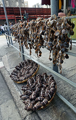 Public Hanging of Chicken Gizzards (cowyeow) Tags: china street city food chicken public asian hongkong weird funny asia absurd chinesefood chinese meat wrong odd stupid hanging dried  kowloon kowlooncity gizzards gizzard funnychina