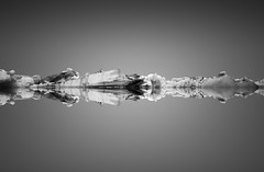 Pulse (vulture labs) Tags: ice iceland lagoon minimal glacier minimalist jokulsarlon fineartphotography