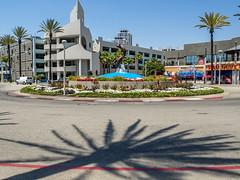 Fountain Turn, Long Beach (Anthony's Olympus Adventures) Tags: longbeach california losangeles fountain road corner street tree sky city streetscape cityscape roundabout grandprixoflongbeach indycar verizonindycarseries cart irl