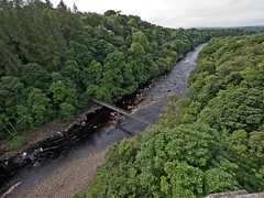 Taken from Lambley Viaduct on the Haltwhistle to Alston Railway (penlea1954) Tags: lambley viaduct river south tyne stone arches haltwhistle alston railway north pennine heritage trust old architecture bridge arch outdoor branch line newcastle carlisle mines tynedale preservation society narrow gauge track bed path