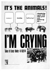 1964 animals (Al Q) Tags: 1964 animals im crying mgm records ad