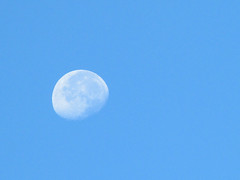 Good Morning Moon (dog.happy.art) Tags: moon sky texas daytime