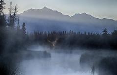 Vermilion at Dawn (tomr0b7) Tags: banff canadian rockies vermilionlakes vermilionlake