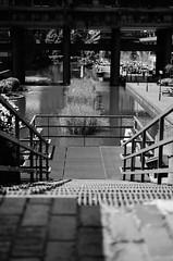 steps (coffeebucks) Tags: barbican barbicancentre brutalism modernism barbicanestate cityoflondon london architecture chamberlinpowellandbon lakesideterrace