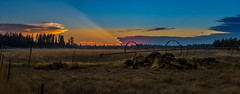 1TH_6132-Pano (terryhamilton681) Tags: washington palouse dusk evening gate road country sunset rocks grass wheels farm fence sky clouds pink blue orange old scenic irrigationsystem landscape