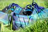 Merrell (SpotShot) Tags: sony a7 ilce7 sonya7 fe 28–70 mm f35–56 oss 28 70 2870 sony2870mmf3556 sonyfe2870mmf3556 sel2870 merrell shoes schuhe gras green grün sun sonne