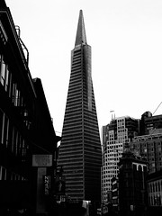 California2015-18 (Felson.) Tags: vacanza viaggio holiday trip travel honeymoon california norcal usa sanfrancisco frisco transamericapyramid skyscraper grattacielo building palazzo piramide pyramid black white bianco nero